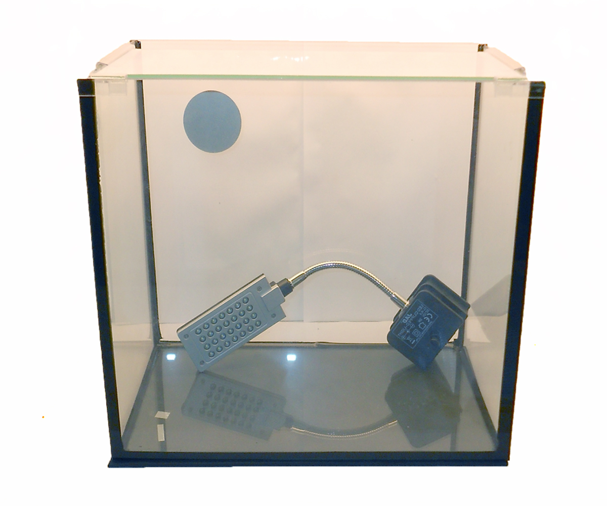 Nano cube aquarium size 2 rendo shrimp shop for Aquarium nano cube