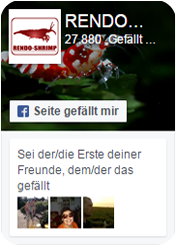 RENDO-SHRIMP bei Facebook